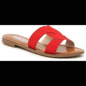 NEW Steve Madden Sandals